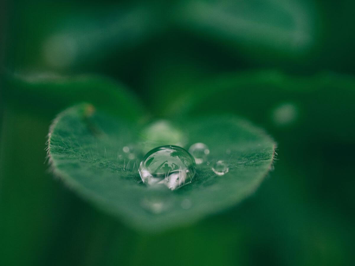 Climate Drops Platform - Blog S-pro