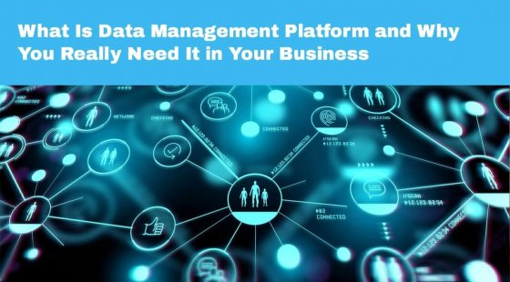 What Is Data Management Platform and Why You Really Need It in Your Business